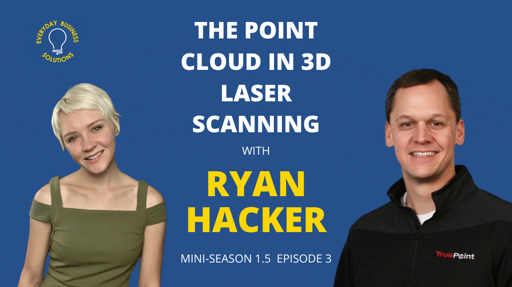 The Point Cloud in 3D Laser Scanning